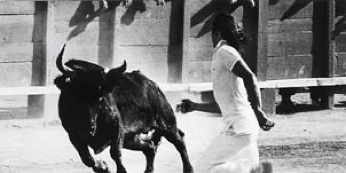 Commanditaires - Directors of Camargue bullfighting arenas in association  with the Fédération Française de la Course Camarguaise (French Federation  of ... 66e194d21fb